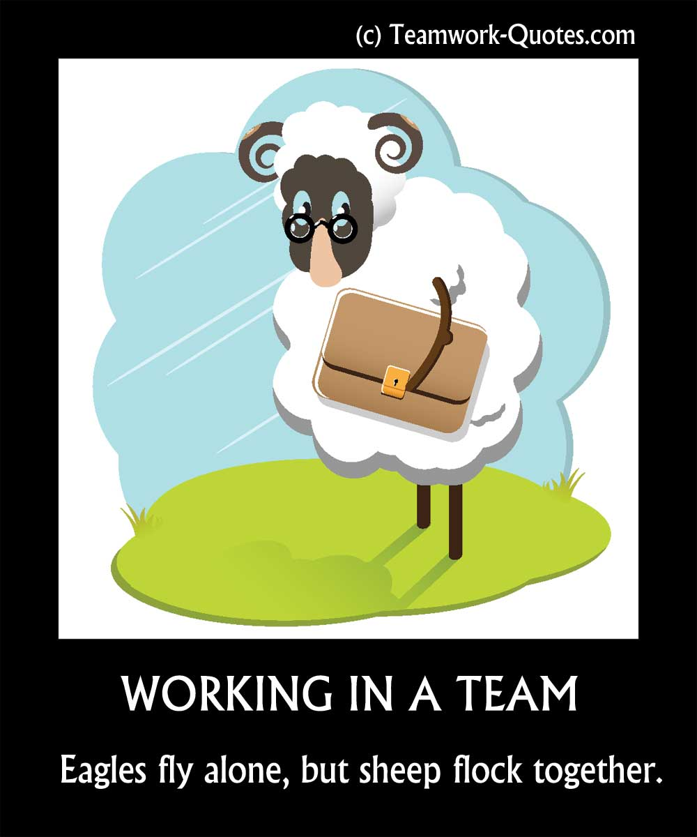 Sheep working in a team poster